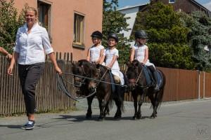 Bergfest 2015 - Festumzug am Sonntag